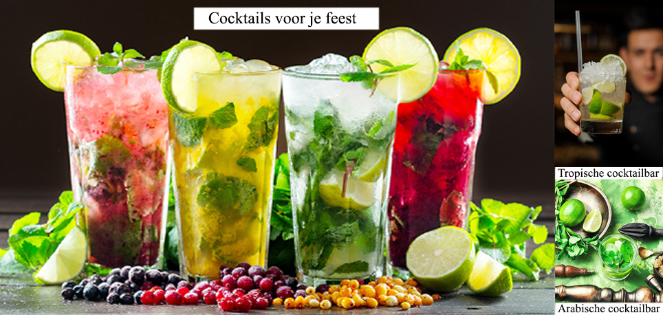 Raw Catering Feest